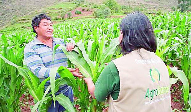 Agricultores sin acceso a créditos