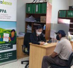 Más de 286 mil agricultores accedieron a créditos de Agrobanco