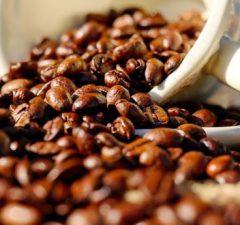 Perú es octavo exportador mundial del café